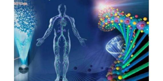 0-bioharmonex-calivita-1200x600