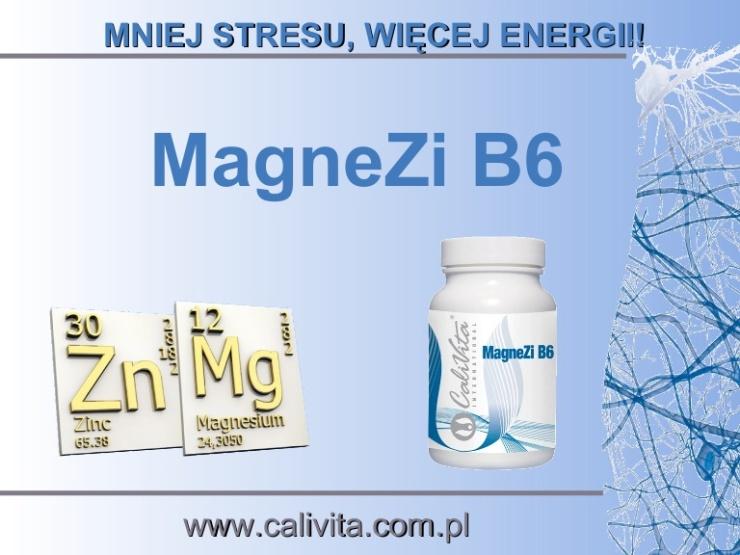 magnezib6-130418091729-phpapp01-130703111218-phpapp01-thumbnail-4.jpg