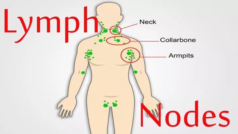 Blog - Post - Cură pentru curățarea sistemului limfatic- slăbirea devine posibilă