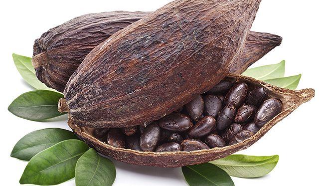 100022-cocoa-00-pods