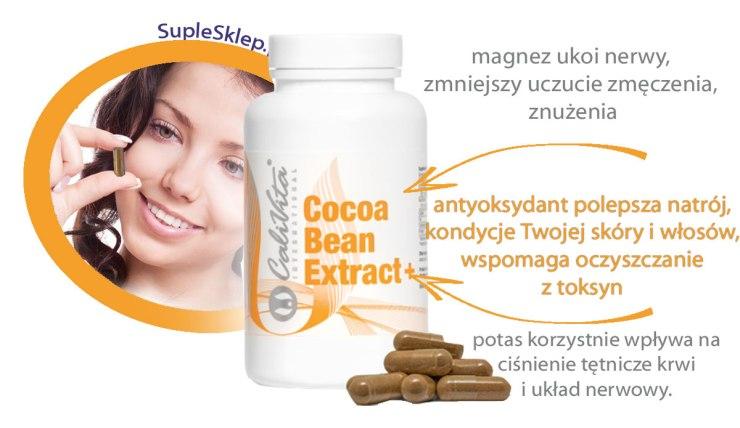 cocoa-bean1